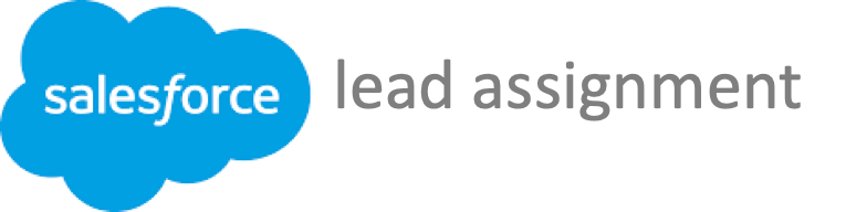 How to Auto assign a new Lead to Queue in Salesforce